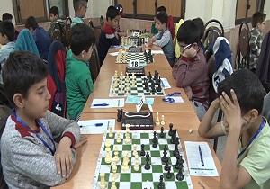 معرفی برترین های شطرنج همدان