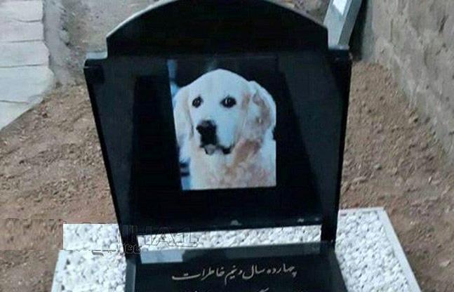 مراسم لاکچری برای خاکسپاری یک سگ در مسجد سنگر رشت ! + عکس