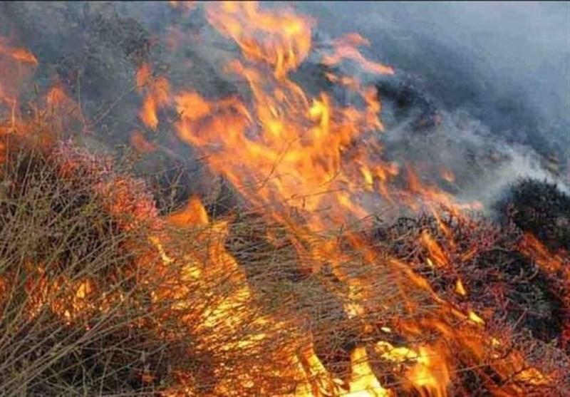 آتش سوزی در جنگلهای خان زنیان