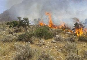 آتش سوزی در مراتع آبیک