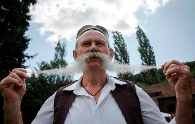 تصاویر روز: از برگزاری مسابقات بلندترین سبیل در صربستان تا استتار یک جغد بر روی تنه درخت در کانادا