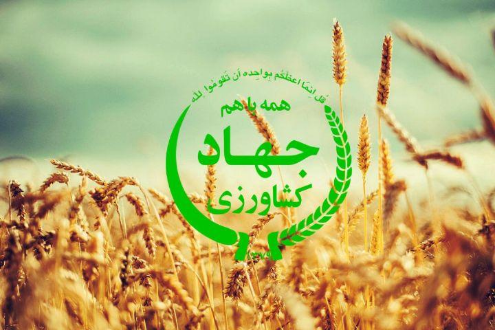 جذب ۳۰۰میلیاردی تسهیلات کشاورزی در گیلان