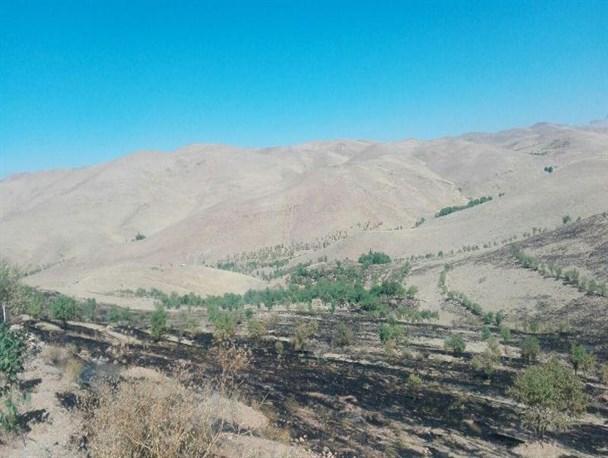 خسارت ۶۰۰ میلیون ریالی آتش سوزی به مراتع روستای کردآباد فراهان