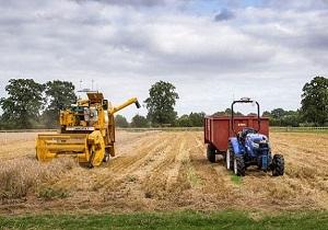 بخش کشاورزی ۳۰ درصد اشتغال چهارمحال و بختیاری را دارد