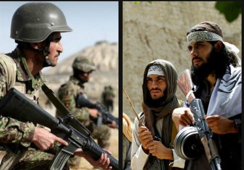 کشته شدن ۱۱ عضو طالبان در ولایت پکتیا