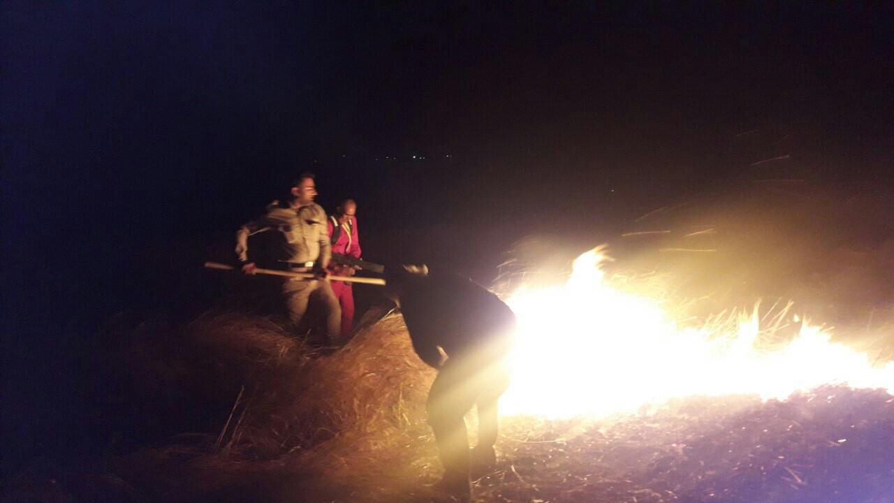 جزییات آتش سوزی منطقه حفاظت شده هامون در سیستان+ عکس