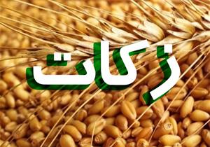 افزایش ۱۲۹ درصدی در آمد کمیته امداد خوزستان
