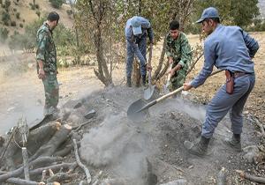 تخریب دو کوره زغال غیرمجاز در لردگان