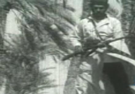ناکامی انگلیسیها در تصرف خلیج فارس، از نبرد دلوار تا کنون + فیلم