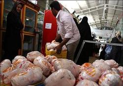 روز/مرغداران متهم اصلی گرانی مرغ هستند/ قیمت هر کیلو مرغ ۱۵ هزار و ۵۰۰ تومان