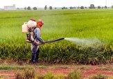 ساماندهی فروشگاههای عرضه سموم کشاورزی در استان همدان