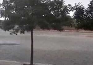 فیلمی از بارش باران تابستانی در کبودرآهنگ