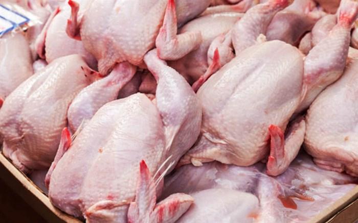 عمده دلایل افزایش قیمت تمام شده تولید مرغ در بازار / نیازی به واردات مرغ نداریم