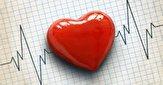 باشگاه خبرنگاران -کارشناسان پزشکی، تأثیر پارازیت بر عملکرد قلب را رد نکرده اند