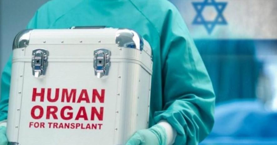اسرائیل بهشت تجارت اعضای بدن انسان؛ مجاز بودن کشتن ملتها در ایدئولوژی صهیونیستی