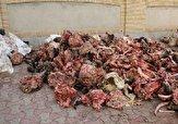 ضبط حدود ۴۰ کیلو گوشت فاسد در روز عید قربان در مهاباد