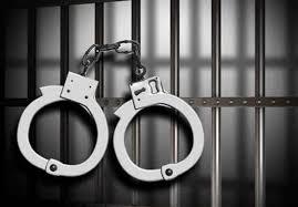 دستگیری ۲ سارق خودرو در خیابان آزادی