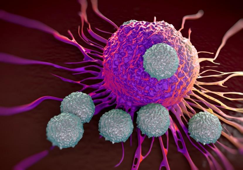 نانوذرات نورانی که مرگ سلولهای سرطانی را چندبرابر میکند