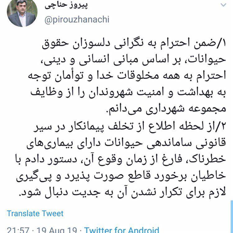 واکنش توئیتری شهردار تهران به سگ کشی/ دستور شهردار تهران برای برخورد با خاطیان