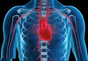 کم شدن فاکتور خون سبب بالا رفتن خطر انعقاد پذیری خون / زمینه اکتسابی انعقاد پذیری خون در افراد مبتلا به بیماری سرطان