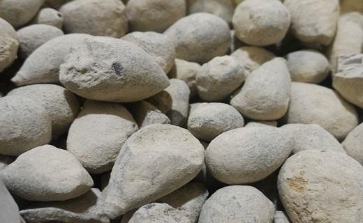 رهایی از سنگ کلیه با نسخههای طبیعی +پرهیزات غذایی / قویترین سنگ شکنهای گیاهی