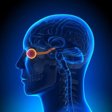 باشگاه خبرنگاران -تحریک عصب بینایی برای کمک به نابینایان