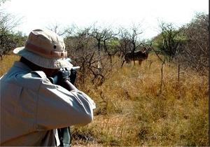 دو شکارچی، شکار قانون شدند!