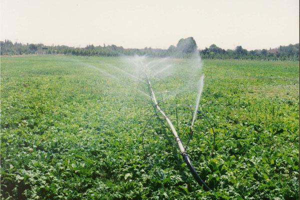 نیاز یکهزار و ۸۱۳ میلیارد ریال اعتبار برای توسعه محوری شهرستان تکاب در بخش کشاورزی