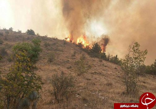 جنگل های ارسباران در آتش می سوزد/۳۰۰ هکتار طعمه حریق شد/ آتش در حال پیشروی