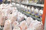 توزیع روزانه حدود ۳۰ تن مرغ با قیمت مصوب در قم