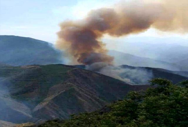 آتش سوزی جنگل های ارسباران از کنترل خارج شده است/ لزوم کمک رسانی لشکری و کشوری