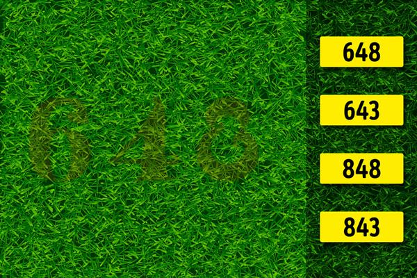 با حل کردن این معماها تیزبینی خود را محک برنید!   تصاویر