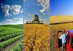 ۱۵ هزارو ۸۹۸ میلیارد ریال اعتبار طرحهای کشاورزی استان همدان