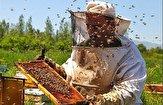 باشگاه خبرنگاران -طرح آمارگیری کلونیهای زنبور عسل