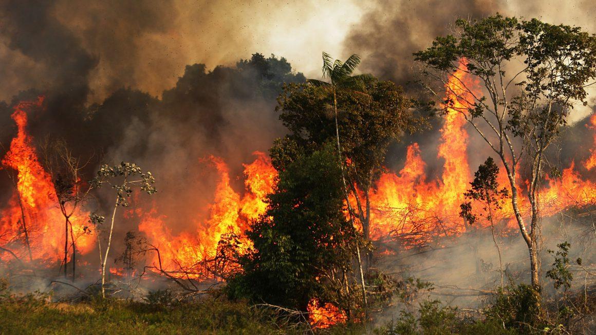 ادامه آتش سوزیهای گسترده در جنگلهای آمازون