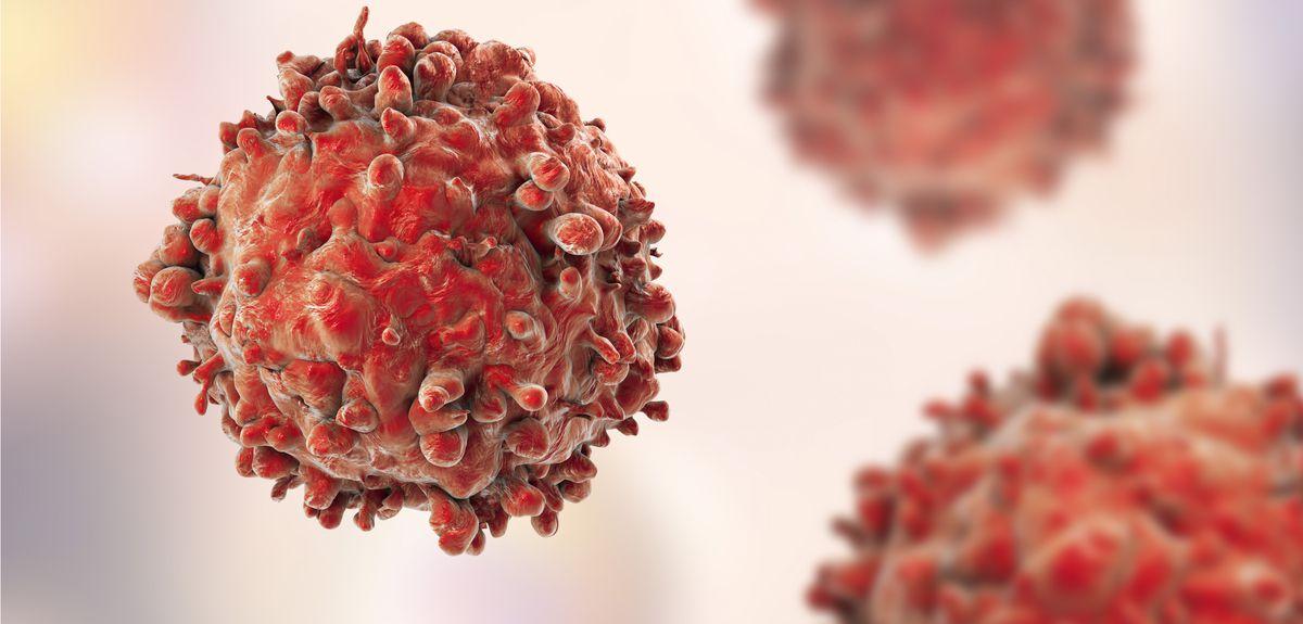 فولیکولهای مو سلولهای سرطانی پوست را مهار میکنند