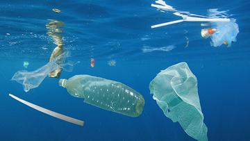 ساخت جانشینی از دل طبیعت برای پلاستیکها