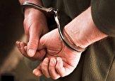 باشگاه خبرنگاران -دستگیری اعضای یک باند سرقت از منازل