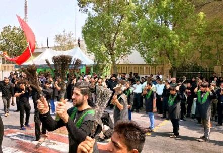 عزاداری تاسوعائیان در بوشهر
