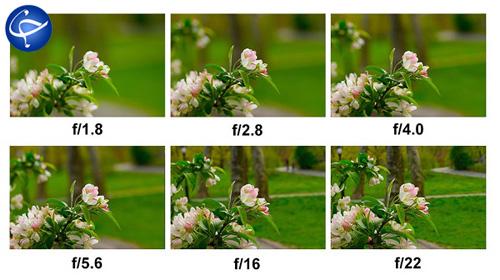 جلسه دوم آموزش عکاسی رایگان؛ آشنایی دقیق با پارامترهایی که همه چیز دنیای عکاسی هستند! + تصاویر