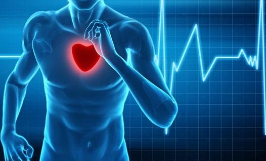 برنامه ورزشی مناسب برای بیماران قلبی و عروقی