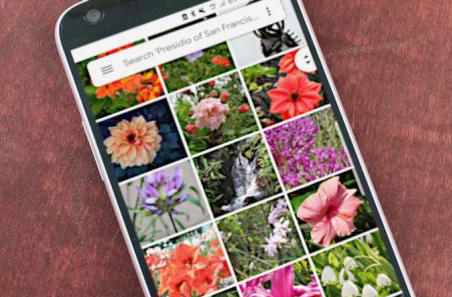 جستجوی متن، قابلیت جدید نرمافزار Google Photos