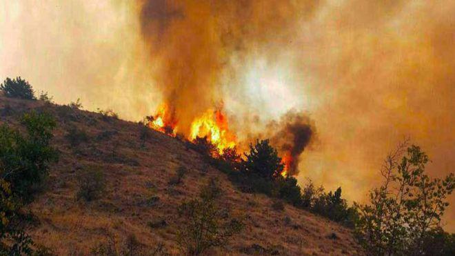 شعله ور شدن مجدد آتش در جنگل های ارسباران ، شایعه یا واقیعیت ؟
