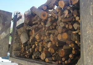 کشف چوب جنگلی قاچاق در کیار