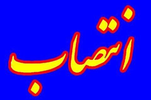 مجید غمخوار سرپرست سازمان عمرانی مناطق شهرداری تهران شد
