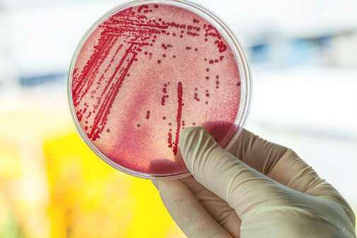 ساخت آنتیبیوتیکهای سنسوردار