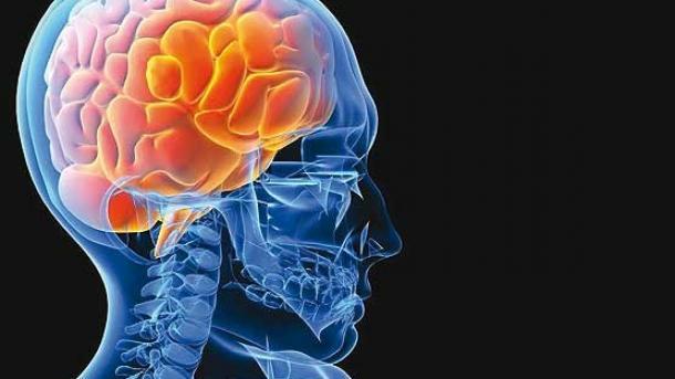 با این خوردنیهای خوشمزه و طبیعی از سکته مغزی فاصله بگیرید