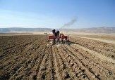 باشگاه خبرنگاران -۵۰۰هزار هکتار محصولات کشاورزی پاییزه در اراضی لرستان کشت می شود