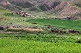 باشگاه خبرنگاران -اجرای عملیات بیولوژیک آبخیزداری در مراتع استان کردستان