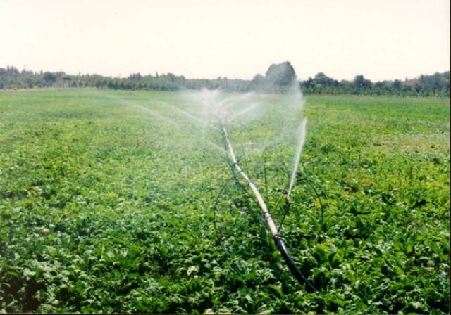صدور سند برای ۲۷۱ هکتار زمین کشاورزی در فامنین